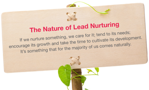 The Nature of Lead Nurturing