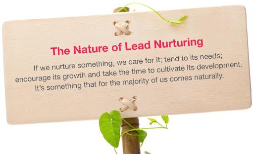 The Nature of Lead Nurturing